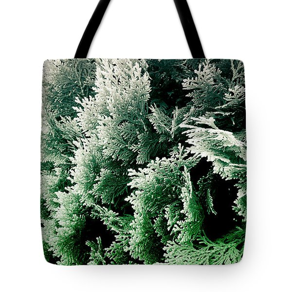 Cypress Branches No.5 Tote Bag