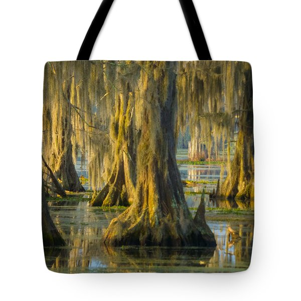 Cypress Canopy Uncovered Tote Bag