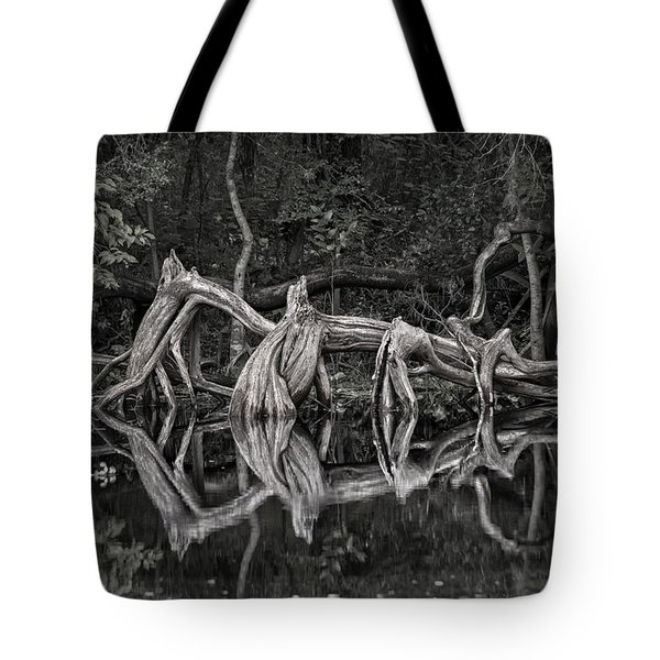 Tote Bag featuring the photograph Cypress Design by Steven Sparks