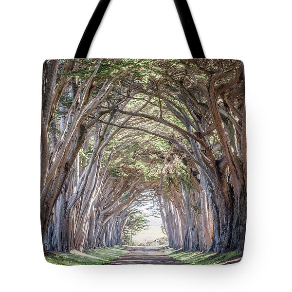 Tote Bag featuring the photograph Cypress Embrace by Everet Regal