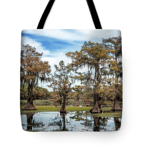 Cypress Expression  Tote Bag