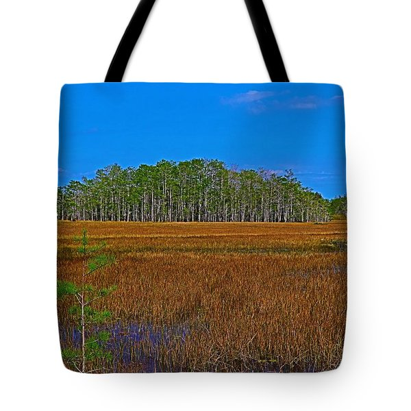 Cypress Hammock Tote Bag