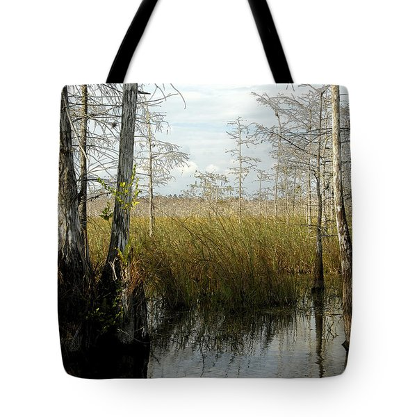 Cypress Landscape Tote Bag by David Lee Thompson
