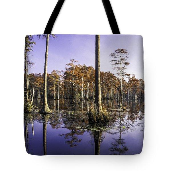 Cypress Pond 05 Tote Bag