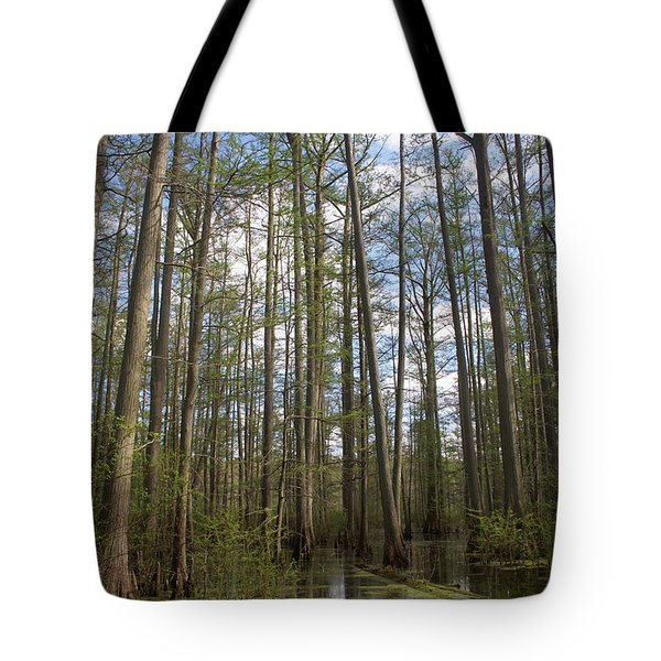 Tote Bag featuring the photograph Cypress Pond by Dylan Punke
