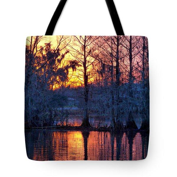 Cypress Sunrise Tote Bag