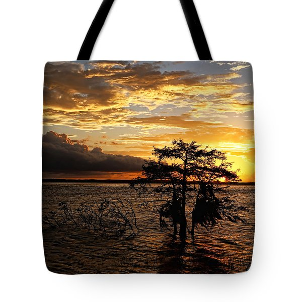 Cypress Sunset Tote Bag by Judy Vincent
