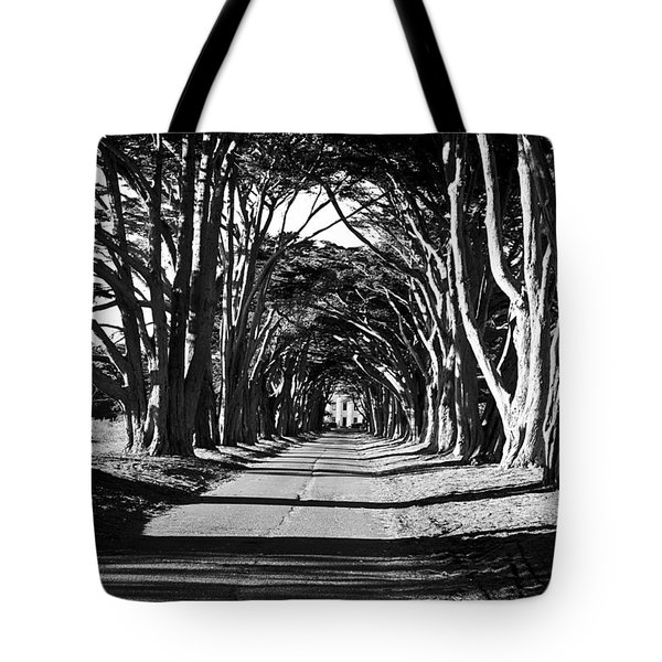 Cypress Tree Tunnel Tote Bag