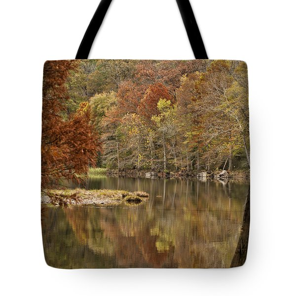 Cypress Window Tote Bag
