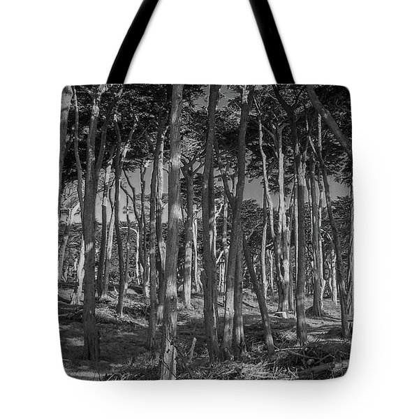 Cyprus On Point Lobos Tote Bag by Mark Barclay