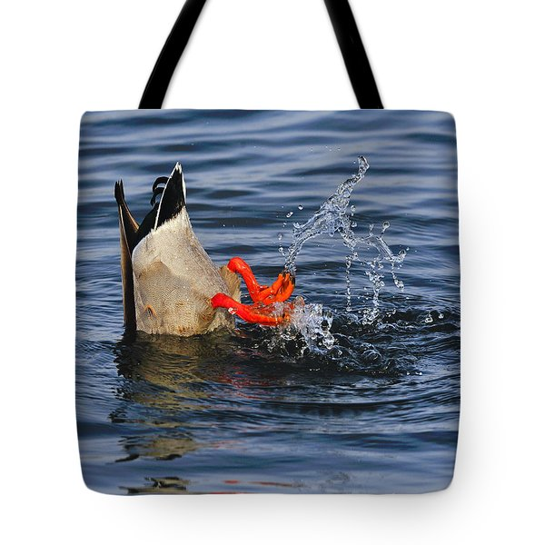 Dabbling - Mallard Tote Bag by Tony Beck