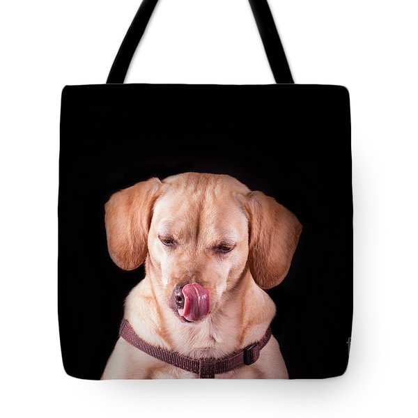 Dachshund Mix Licking Lips Tote Bag by Stephanie Hayes