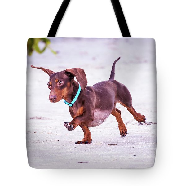 Dachshund On Beach Tote Bag by Stephanie Hayes