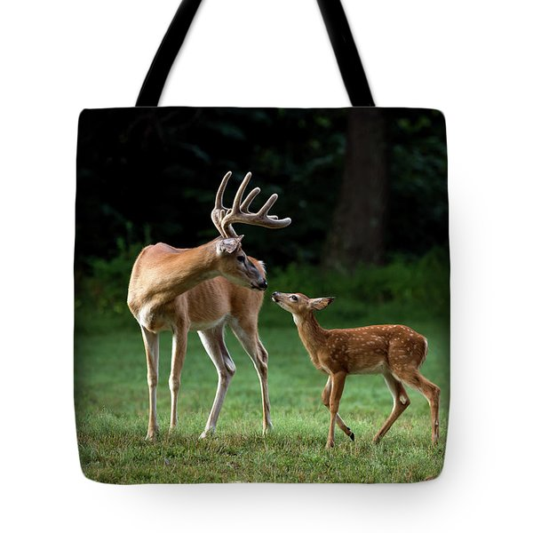Tote Bag featuring the photograph Daddy Day Care by Andrea Silies