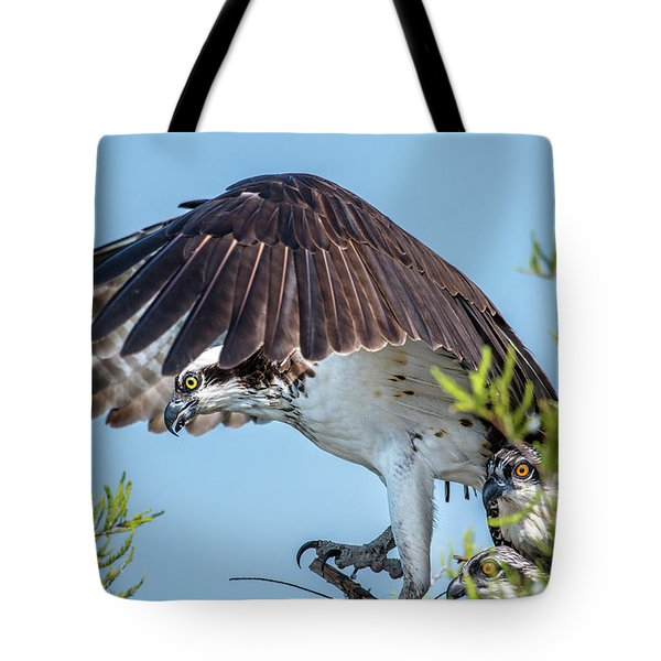 Daddy Osprey On Guard Tote Bag