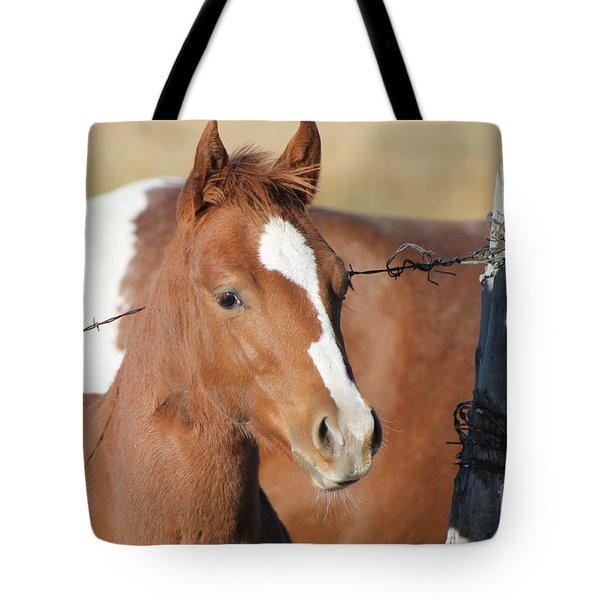 Daddys Home Tote Bag by Pamela Walrath