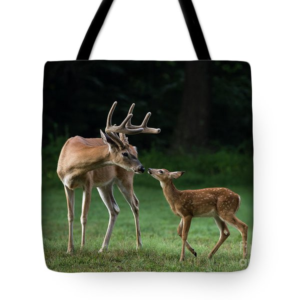 Tote Bag featuring the photograph Daddy's Little Girl by Andrea Silies