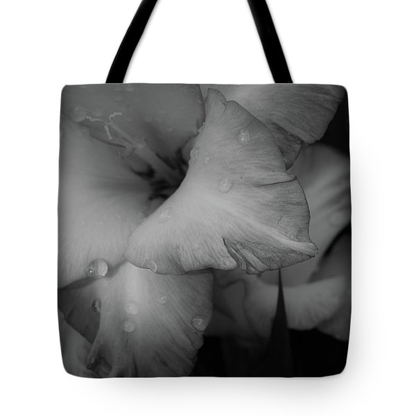 Dads Glads-2 Tote Bag