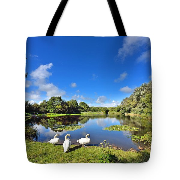 Dafen Pond Tote Bag