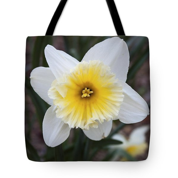 Tote Bag featuring the photograph Daffodil At Black Creek by Jeff Severson