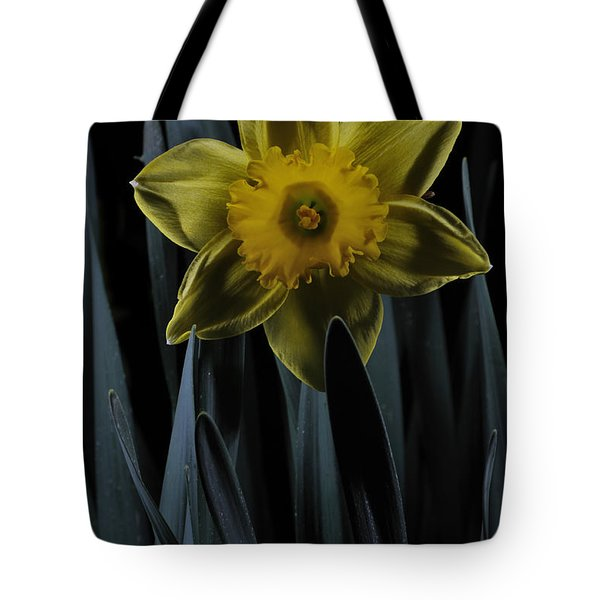 Daffodil By Moonlight Tote Bag