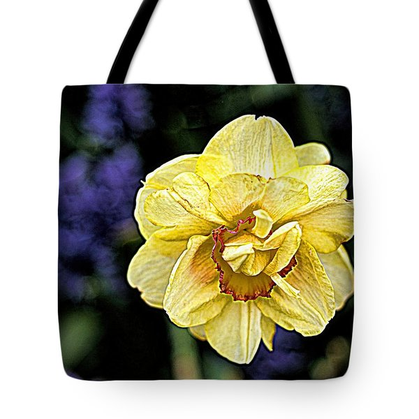 Tote Bag featuring the photograph Daffodil Dallas Arboretum by Diana Mary Sharpton