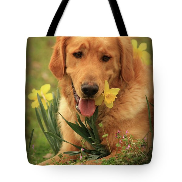 Daffodil Dreams Tote Bag