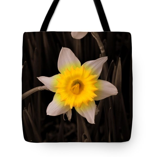 Tote Bag featuring the photograph Daffodil by Lisa Wooten
