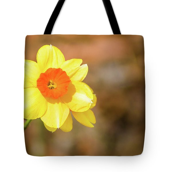 Tote Bag featuring the photograph Daffodil by Lynne Jenkins