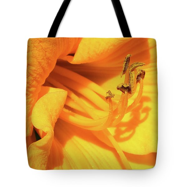 Daffodil - Peeping Tom 06 Tote Bag