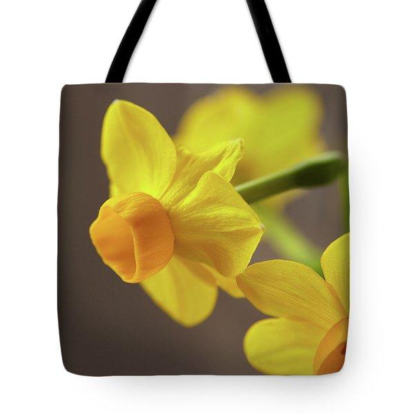 Daffodil Sunrise Tote Bag