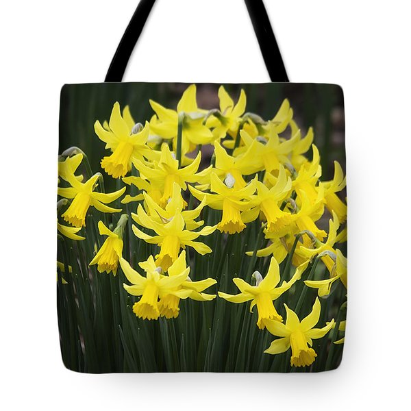 Daffodil Yellow Tote Bag by Shirley Mitchell
