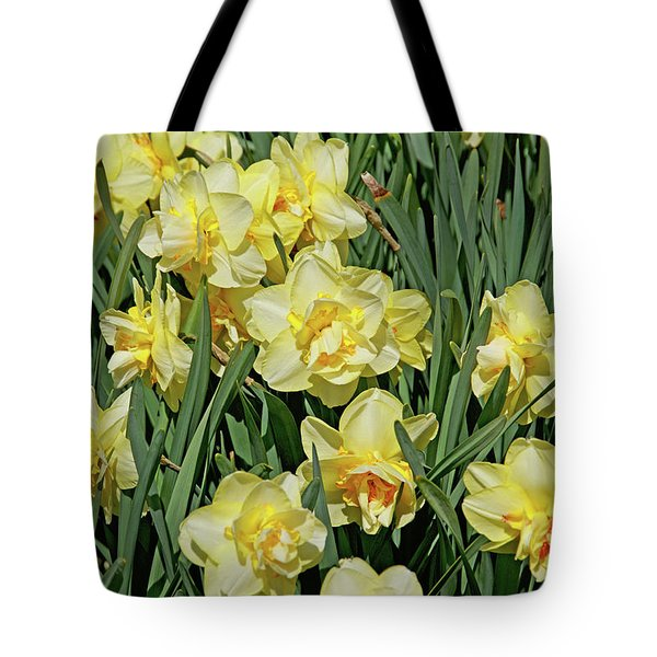 Tote Bag featuring the photograph Daffodilia by Lynda Lehmann