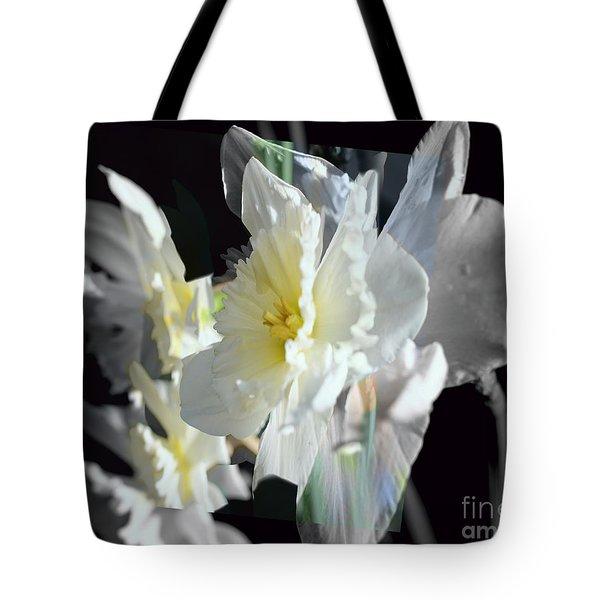 Daffodils Shades Of Grey Tote Bag by Elaine Hunter