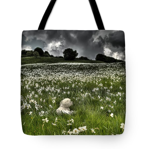 Tote Bag featuring the photograph Daffodils White Blossoming With Little White Lilly 7 by Enrico Pelos