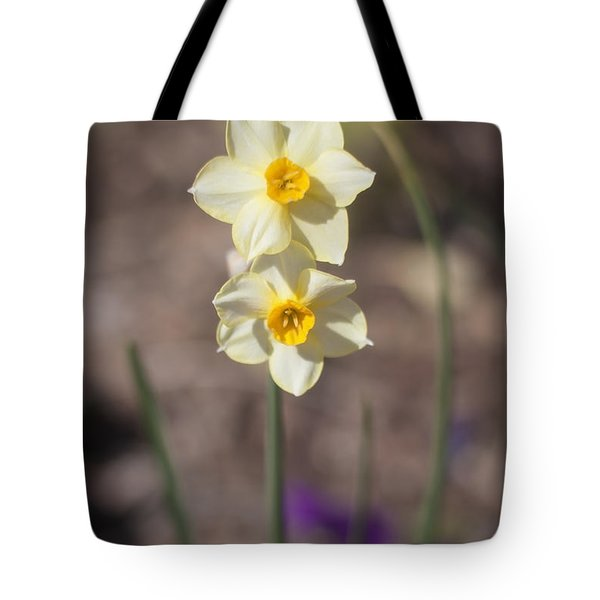 Daffy Duet Tote Bag
