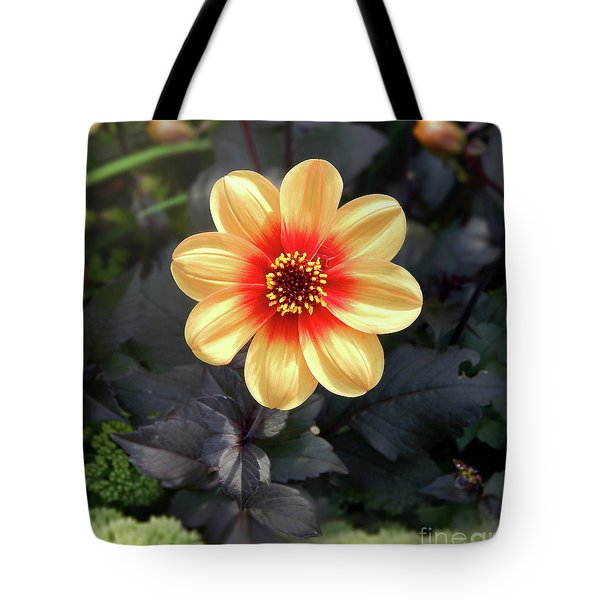 Dahlias Flower - Good Morning Sunshine Tote Bag