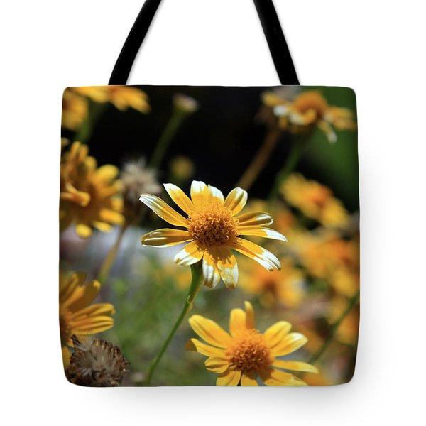Dahlberg Daisy Tote Bag