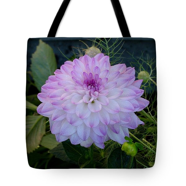Dahlia Beautiful Tote Bag by Shirley Heyn