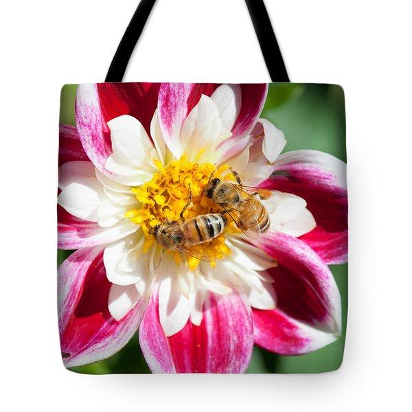 Dahlia Bee Buffet Tote Bag