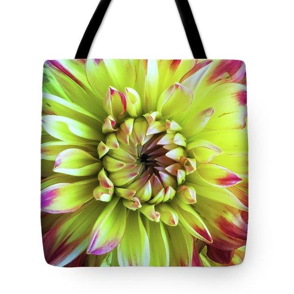 Dahlia Close-up Tote Bag by Andrew Soundarajan