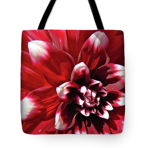 Dahlia Defined Tote Bag by Randy Rosenberger