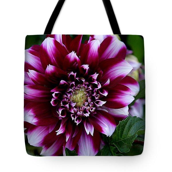 Dahlia Tote Bag by Denise Romano