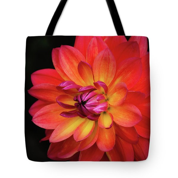 Tote Bag featuring the photograph Dahlia Firepot  by Julie Palencia