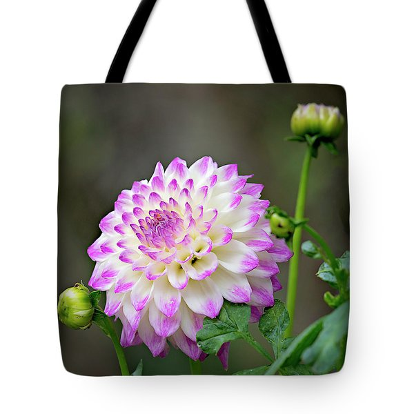 Dahlia Flower Tote Bag