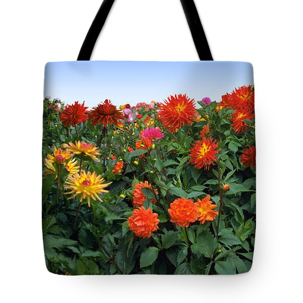 Dahlia Flower Panorama Tote Bag
