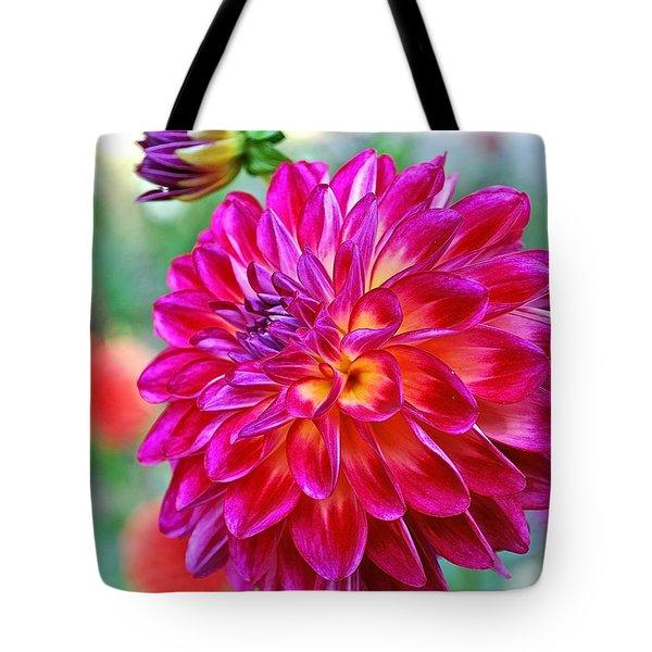 Dahlia Fuchsia Surprise  Tote Bag