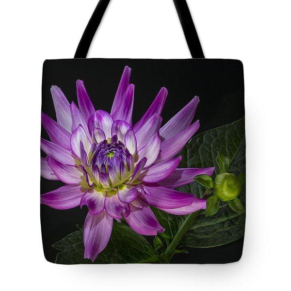 Dahlia Glow Tote Bag by Roman Kurywczak