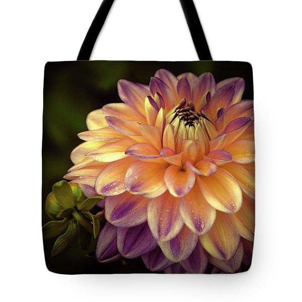 Dahlia In Peach And Lavender Tote Bag