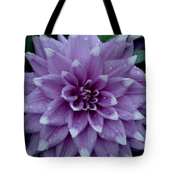 Dahlia In Rain Tote Bag by Shirley Heyn